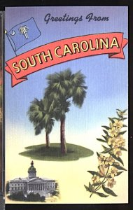 USA Postcard Greetings From South Carolina Palmetto Tree
