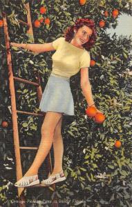 USA Sunny Florida Beautiful Lady Orange Picking Time