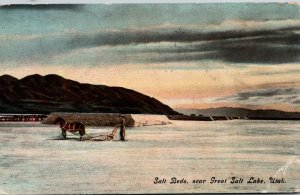 Utah Great Salt Lake Salt Beds 1914 Curteich