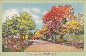 South Carolina Seneca Greetings From Seneca