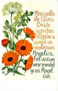 Herb Garden Series #616. Editor: Eleanore S. Rohde; Design by Hilda M Coley