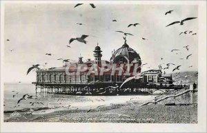 Old Postcard Seagulls Nice Palais de la Jetee