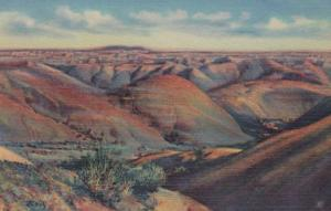 Arizona The Painted Desert Curteich