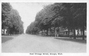 Sturgis Michigan~East Chicago Street Homes~1920s B&W Postcard