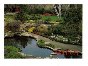 Royal Botanical Gardens, Flowers, Stream,  Hamilton, Ontario Large 5X7 Postcard