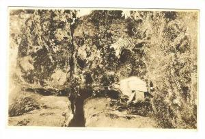 RP, Red Riding Hood, Rock City Gardens, Lookout Mountain, Tennessee, 1920-1940s