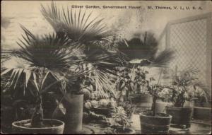 St. Thomas Virgin Islands Gov't House Garden c1920 Used Postcard