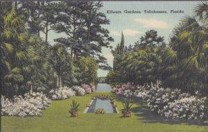 TALLAHASSEE FL -  beautiful Killearn Gardens, 1930/40s