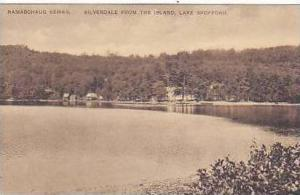 New Hampshire Lake Spofford Silverdale From The Island Namaschaug Series Albe...