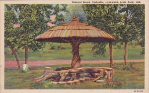 Natural Beach Umbrella Lakewood Little Rock Arkasnsas