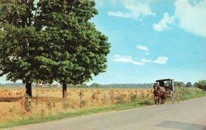 near Goshen, Elkhart County, IN, Horse Drawn Rig, Chrome Vintage Postcard g8314