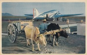 Airplane of AMERICAN AIRLINES , 1950s ; Mexico