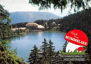 Mummelsee Schwarzwald-Hochstrasse Berghotel Gesamtansicht Lake Boats