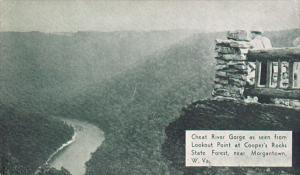 Cheat River Gorge from Lookout Point, Cooper's Rocks State Forest near Morgan...
