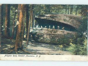 Pre-1907 ALLIGATOR ROCK Catskill Mountains - Kingston & Poughkeepsie NY A1462