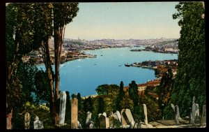 Constantinople Eyoub Cemetery. E.F. Rochat color card. French offices in Turkey