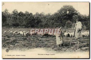 Old Postcard Folklore Echassier and Shepherd Landais Sheep