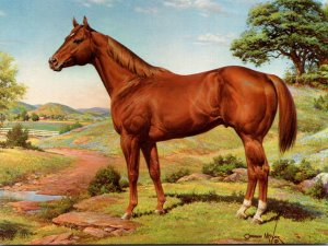 American Quarter Horse Painting By Orren Mixer