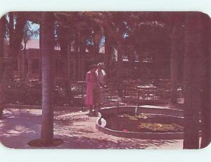 Unused 1950's PALM GARDENS RESTAURANT Largo Florida FL s1014