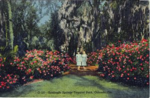 [ Linen ] US Florida Orlando - Sanlando Springs Tropical Park