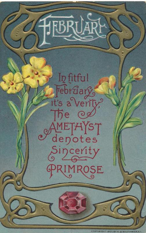 Birth Month February - Birthstone Amethys - Flower Primrose - DB