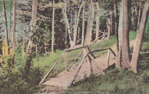 Maine Monmouth Cobbossee Landing Albertype
