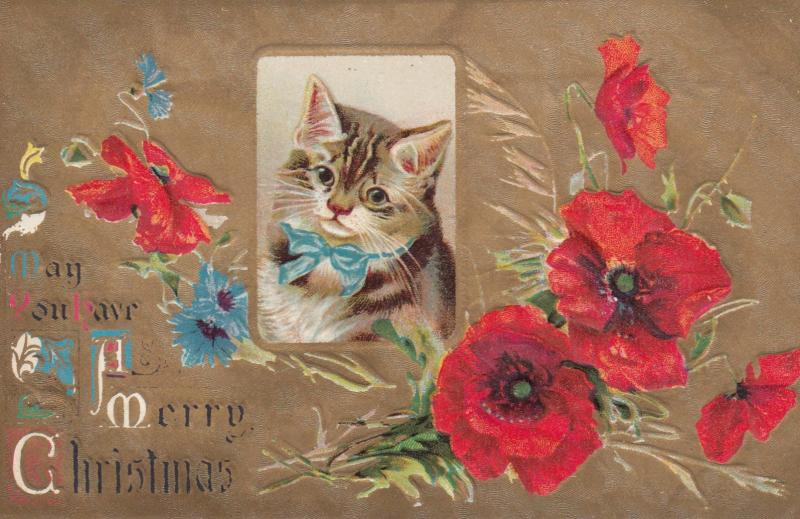 CHRISTMAS , Cat & Flowers , 00-10s
