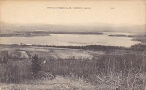 Maine Lincoln Mattanawcook Lake