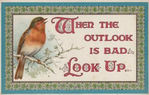 Robin Weather Outlook Songcard Look Up Bird Morale Proverb Postcard