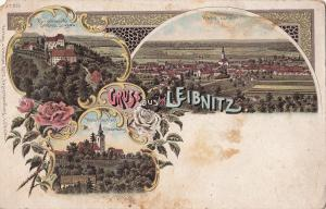 Austria litho Gruss aus Leibnitz Schloss Seggau Markt Wahltfahrtsort Frauenberg