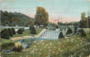 Springfield Massachusetts~Forest Park Fountain Pool~Wildflowers~1908 Postcard
