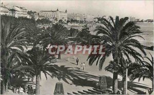 Modern Postcard Cannes Gardens Edward VII and the Croisette