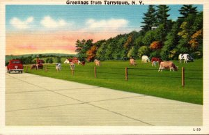New York Greetings From Tarrytown