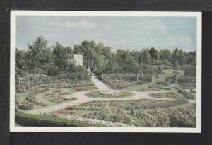 The Rose Garden,MO Botanical Gardens,St Louis,MO Postcard