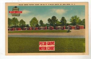 3135  NC New Bern   Pecan Grove Motor Court
