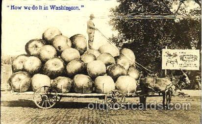 Exaggeration Postcard Post Card Washington Postal Used Unknown