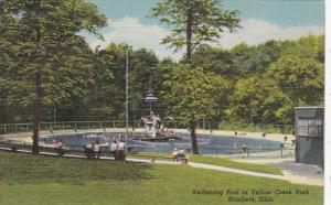 Ohio Struthers Swimming Pool Yellow Creek Park Curteich