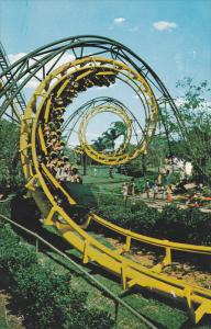 Python, Thrill Ride, Busch Gardens, TAMPA, Florida, 40-60´