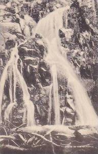 Virginia Fort Royal Bridal Veil Falls In Shenandoha National Park Albertype