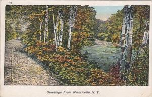 New York Greetings From Monticello 1934