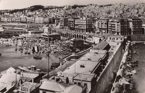 Algeria Alger center of the town panorama