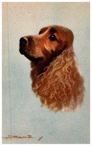 Dog ,  artist signed