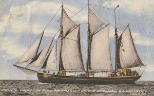 Sailing Vessel , 00-10s : PRINCE LOUIS