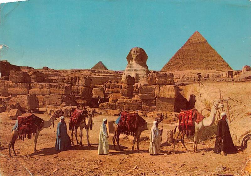Egypt Giza The Sphinx and the Pyramids Cheops Camels