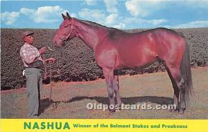 Nashua, Winner of the Belmont Stakes and Preakness Lexington, Kentucky, KY, U...