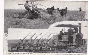 Farming: Cutting & Breaking , WEYBURN , Saskatchewan , Canada , 00-10s