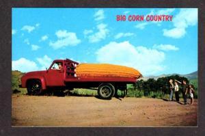 Cute  Exaggeration Ear of Corn in Truck Postcard PC