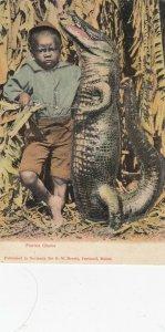 Florida Chums , 1901-07