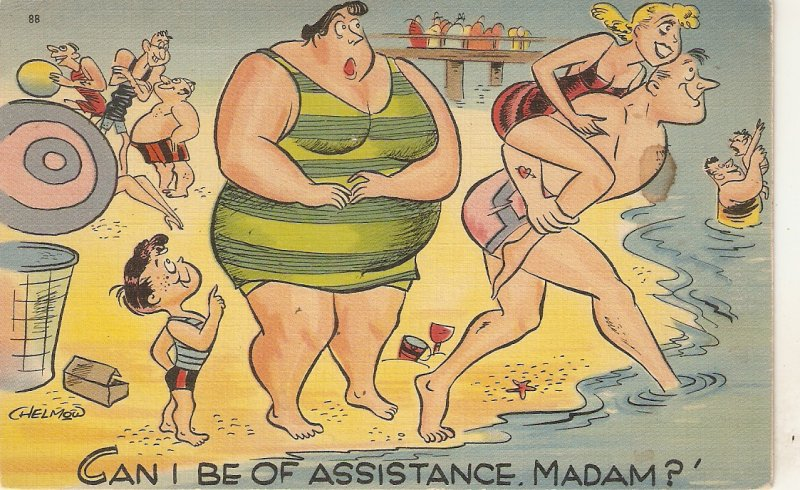 Can I be of assistance, madam?.. Humorous American linen postcard