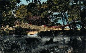 Cameroon Pont de lianes Vintage RPPC 07.32